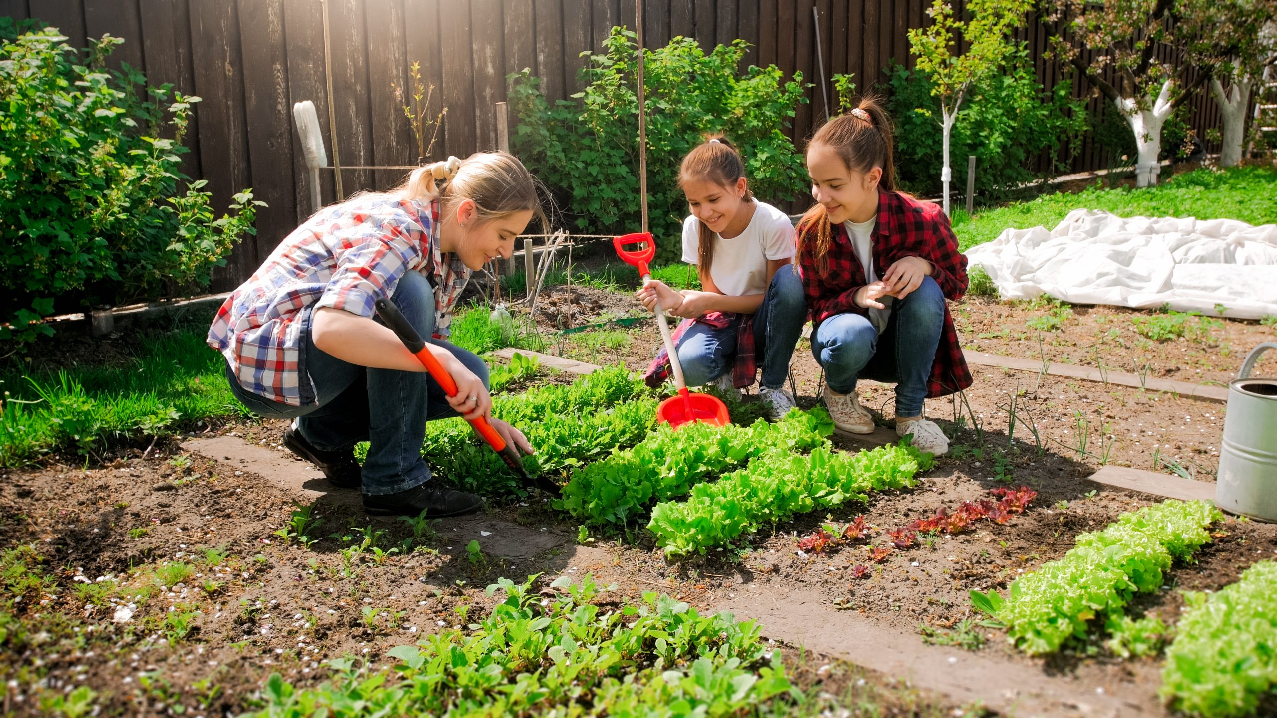 Educating young people in the vegetable garden